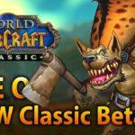 Все, что вы хотели знать о WoW Classic Beta