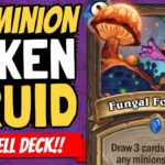 NO MINIONS IN DRUID!?! Which No-Minion Deck is Best: Mage or Druid? | Ashes of Outland | Hearthstone